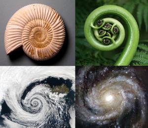 collage-espirales